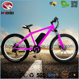 500W Electric Fat Tire Beach Bicycle Hydraulic Suspension pictures & photos