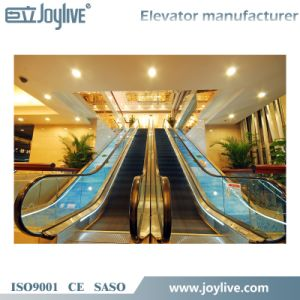 Beautiful Safety Escalator Glass Elevator Lift pictures & photos