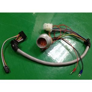 Home Appliance Wire Harness, Wash Machine, Dish Machine, Cooler, Fridge, Heater 2 pictures & photos