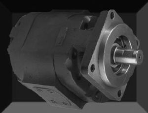 Parker/Commercial Gear Pump&Motor (P25, M25) pictures & photos