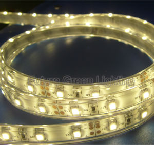 LED Flexible Strip 60PC 5050SMD IP20 DC12V 1year Warranty pictures & photos