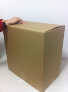 Professional Supplier of Corrugated Paper Box pictures & photos