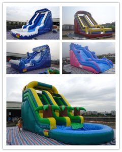 Commercial Grade Inflatable Water Slide with Pool pictures & photos