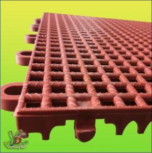 Assembled Sport Floor (4)