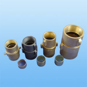 Brass Nst Coupling pictures & photos