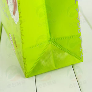 Non Woven Bag with 20kg Holding Customised Print (My-029) pictures & photos