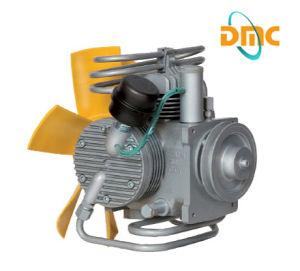 CNG Home Compressor (DMC-5/200, 3600PSI) Pump Unit pictures & photos