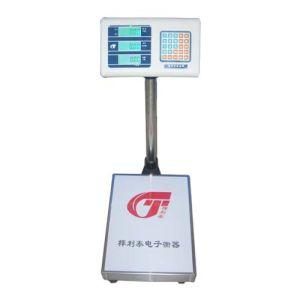Electronic Platform Scale (TCS-08)