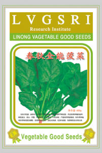 Chun Qiu Quan Neng Spinach Seeds (410)