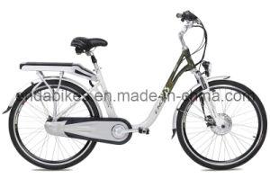 Electric Bicycle/Bike (TDF26S005)