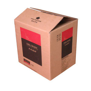 Custom Carton Packaging Box for Shipping pictures & photos