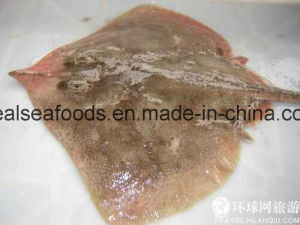 Wholesale Seafood Frozen Red Stingray Ray Fish/Raja Porosa Fillet pictures & photos
