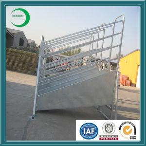 Factory Direct Australia Standard High Quality Pre-Galvanized Steel Rails Cattle Yard Panels / Cattle Fencing Panels pictures & photos