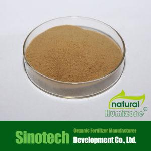 Organic Fertilizer Fulvic Acid From Super Leonardite pictures & photos