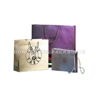 Paper Gift Bag for Clothes, Shoes&Other Gift pictures & photos