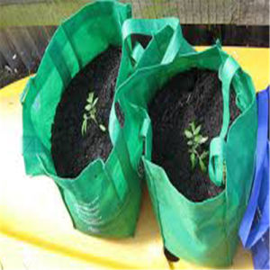 Small Size House Garden Grow Bag Made in China pictures & photos