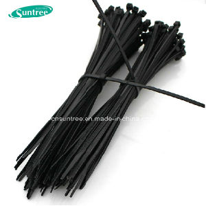 Nylon Cable Tie Plastic Cable Tie 100% Nylon Material Stainless Steel Cable Tie pictures & photos