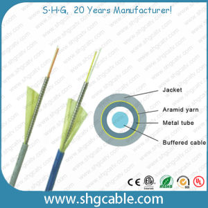 Sc-LC Sm Duplex Armored Fiber Optic Patch Cord pictures & photos