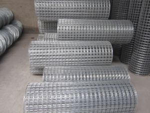 Hot-Dipped Galvanized Welded Wire Mesh/Hot-Dipped Galvanized Square Wire Mesh/Construction Galvanized and PVC Coated Welded Wire Mesh pictures & photos