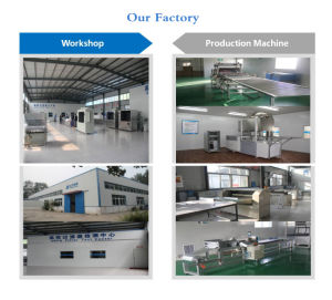 High Performance Oily Wastewater Treatment Equipment pictures & photos