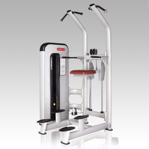 Upper Limbs Gym Machine/Fitness Equipment for Gym Use pictures & photos