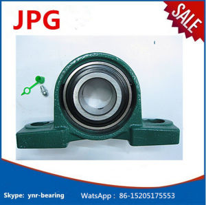 China Hot Whosale Heavy Duty Pillow Block Bearing Ucp204-12 Ucp204 pictures & photos