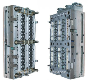 Plastic Injection Mould with Multi Cavities in China (LW-03629) pictures & photos
