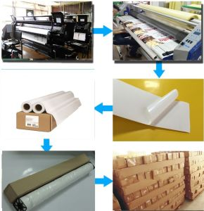 Eco-Solvent Self Adhesive PP Synthetic Paper pictures & photos