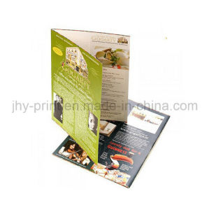 China Professional Two Fold Brochure Printing Service (jhy-440) pictures & photos