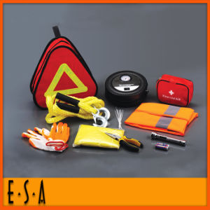 Hot New Product for 2015 Auto Emergency Tool Kit for Cars, CE Car Emergency Tool Kit Safety Convenient Kit T18A118 pictures & photos