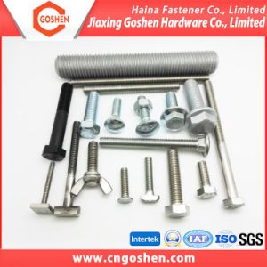 Steel Gr8.8 Hex Bolt / Wing Bolt / T Bolt / Flange Bolt / Carriage Bolts pictures & photos