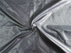 20d Nylon Taffeta Fabric for Down Coat (XSN001) pictures & photos