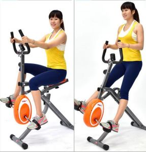2 in 1 Horse Rider and Exercise Bike Magnetic Bike pictures & photos