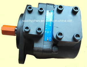 Replacement of Atos Vane Pump Pfe31 pictures & photos