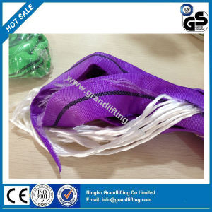 En1492-2 100% Polyester Round Sling pictures & photos
