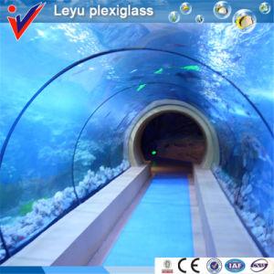 Factory Sale Acrylic Tunnel Aquarium Tank pictures & photos