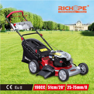 High Quality Powerful Gasoline Lawn Mower for Bush pictures & photos