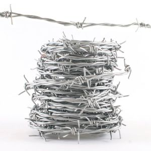 Electro Galvanized Barbed Wire Made in China pictures & photos