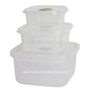 Experienced High-Quality Plastic Injection Mould for Vacuum Airtight Box (WBM-201260))