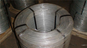 Galvanized Iron Wire with High Quality in on Hot Sale pictures & photos