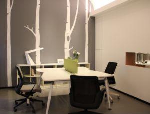 Workstation/Creative Office Furniture/Dental Office Furniture