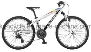 24inch 21speed MTB Bike/Mountain Bikes/Mountain Bicycles/Suspension Bike/Mountain Bike Sale pictures & photos