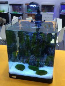 200c-Aquarium Fish Home Glass Tank