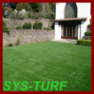 Green Color Artificial Grass Carpet for Front Yard pictures & photos