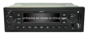 High Quality Car MP3/ HDD Player pictures & photos