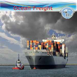 Ocean Freight Shipping FCL Logistics (Sea Freight / Freight Agent) pictures & photos