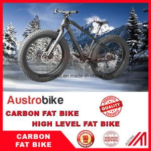 26er Carbon Complete Fat Bike 197mm with Bsa 120mm