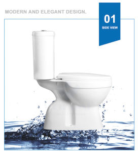 Weidansi Ceramic Wash Down S-Trap Two Pieces Toilet (WDS-T6203) pictures & photos