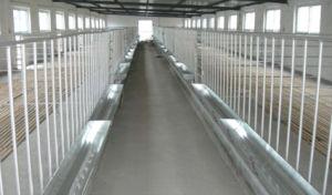 Interior Farm Livestock Feeder CNC Welding Customized Sheet Metal Fabrication pictures & photos