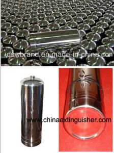Stainless Steel Fire Extinguisher (MFZS6) pictures & photos